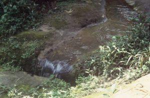 Tano river